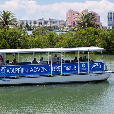 Dolphin-Adventure-Tour-Boat-375x375