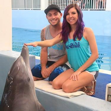 Dolphin-Photo-375x375